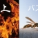 【集客ブログ 010】ソーシャルメディアの「炎上」と「バズる」の違いと集客への活用法