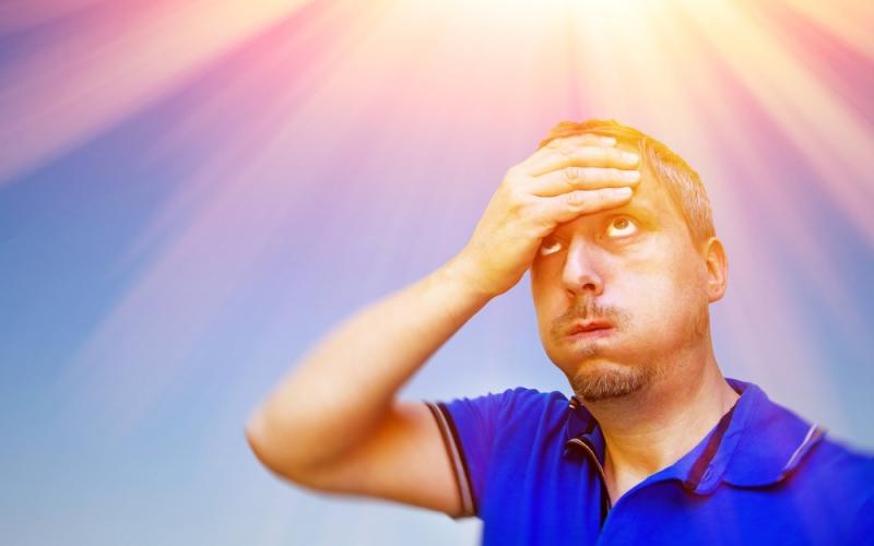 【集客ブログ31】暑さで頭が働かない・・・。そんな時におススメのアイデア脳を助ける10個の食べ物